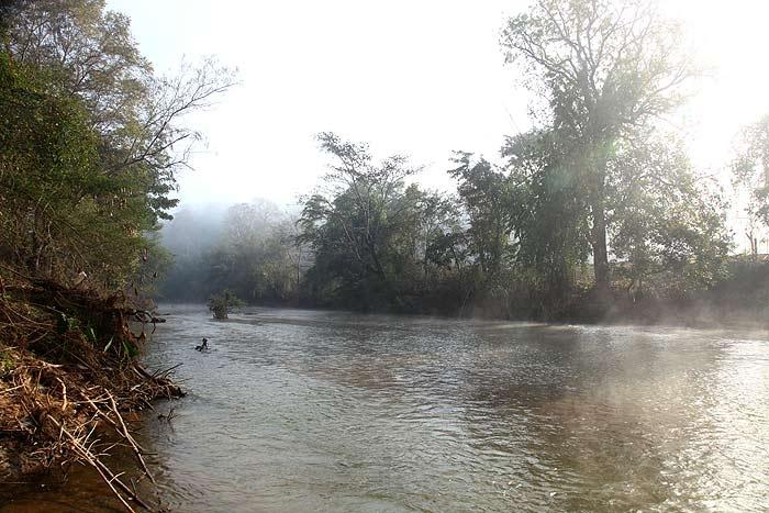 river_tang.jpg